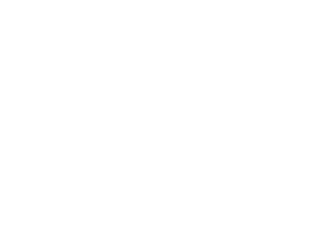 Match! Consulting_Logo_Wit